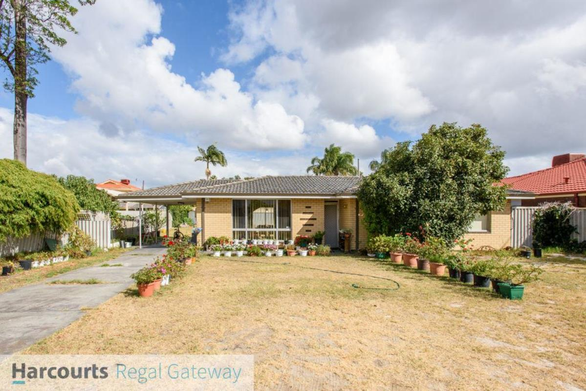 6-scribbly-gum-square-willetton-6155-wa